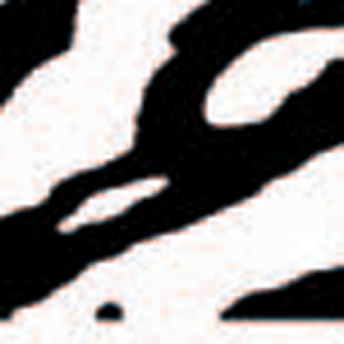 Bohning Blazer Vanes – Specialty Colors